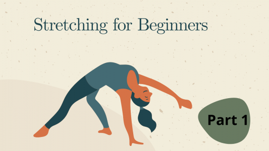 Stretching for Beginners @ Online